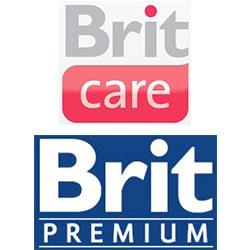 Logo Brit Brit Care